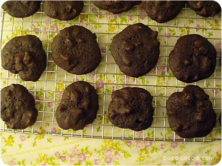 choc-walnut-cookies